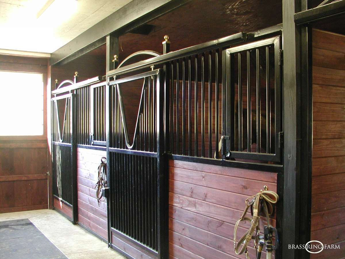 A Circuit Stable Hunter Jumper Equestrian Training